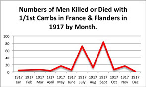 Casualty graph for 1917